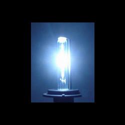 8000K HID Bulbs